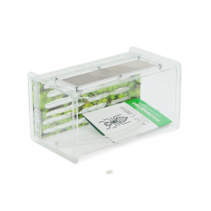 """Комплект муравьиной фермы с муравьями AntLabs Uno """"Зелёный"""""""