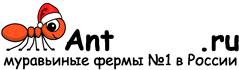 Муравьиные фермы AntFarms.ru - Калуга